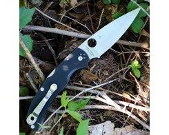 Складной нож Spyderco Native Chief C244GP